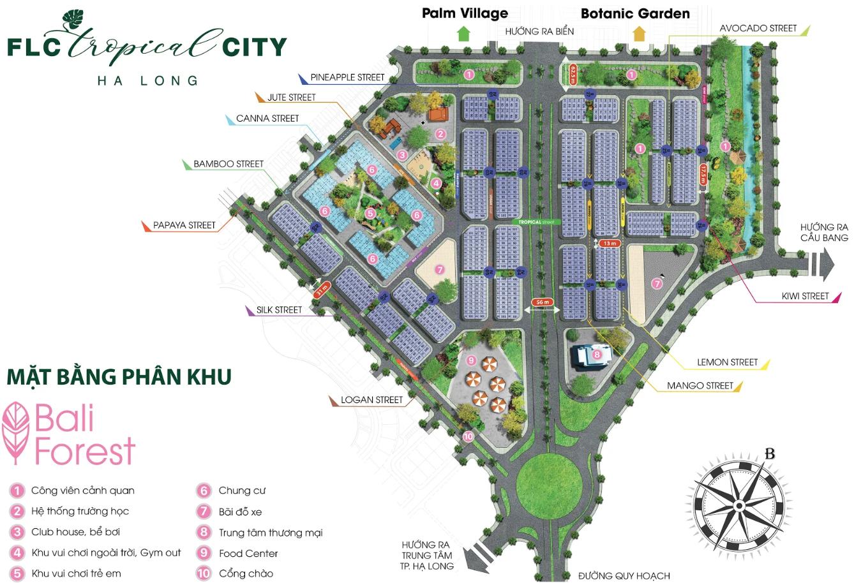 mat bang phan khu bali forest tai flc tropical city